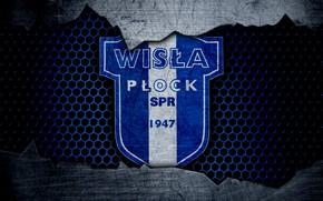 Картинка wallpaper, sport, logo, football, Wisla Plock
