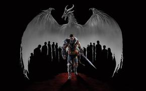 Картинка дракон, воин, Dragon Age II