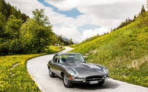 Картинка Jaguar, E-Type, Coupe, Sport