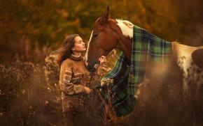 Картинка девушка, любовь, тепло, конь, лошадь, покрывало, дружба, плед, привязанность