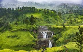 Картинка зелень, лес, горы, туман, скалы, холмы, растительность, склоны, водопад, каскад