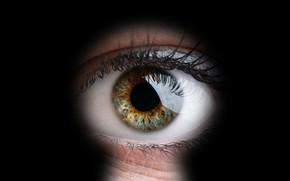 Картинка green, eye, peeping, keyhole