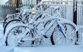 Картинка снег, город, велосипеды