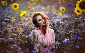 Картинка взгляд, девушка, подсолнухи, рыжая, цветочки, Melanie Dietze