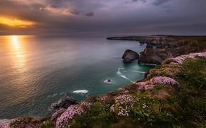 Картинка побережье, Англия, Cornwall