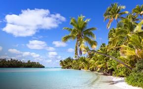 Картинка пляж, тропики, пальмы, океан, лагуна, Cook Islands, One Foot Island (Tapuaetai), Aitutaki