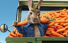 Картинка мультфильм, морковка, кролик, 2020, Peter Rabbit, Кролик Питер, Кролик Питер 2, Peter Rabbit 2
