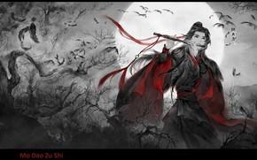 Картинка перья, иероглифы, полнолуние, флейта, черные вороны, корявые деревья, китайская одежда, Mo Dao Zu Shi, Магистр …