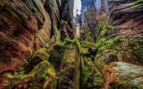 Картинка скалы, мох, rocks, moss, Slawomir Kowalczyk
