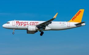 Картинка Airbus, Pegasus, A320-200N