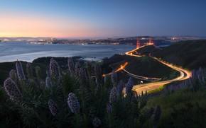 Картинка дорога, лето, небо, закат, цветы, мост, город, огни, берег, побережье, вид, куст, высота, вечер, Сан-Франциско, …