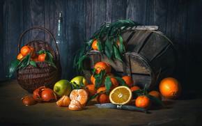 Картинка лимон, апельсины, плоды, нож, цитрусы, мандарины