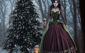 Картинка украшения, пейзаж, рождество, фонарь, иллюстрация, новогодняя ёлка, зайчики, зимняя королева