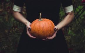Картинка осень, девушка, природа, поза, темный фон, праздник, магия, руки, тыква, ведьма, стоит, черное платье, хэллоуин, …