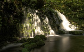 Обои зелень, лес, лето, вода, свет, пейзаж, ветки, природа, камни, растительность, водопад, поток, каскад, водоем