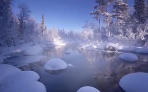 Картинка зима, вода, снег, деревья, пейзаж, природа, Кольский полуостров