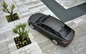 Картинка Toyota, седан, вид сверху, Hybrid, Camry, 2019