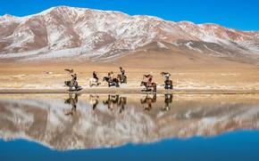 Картинка озеро, охотники, Монголия, Праздник орла