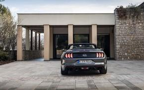 Картинка здание, Ford, кабриолет, вид сзади, 2018, тёмно-серый, Mustang GT 5.0 Convertible