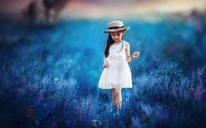 Обои поле, природа, девочка