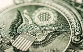 Картинка eagle, money, dollar
