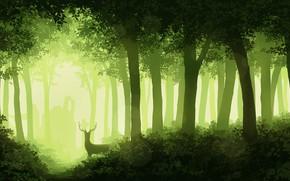 Картинка лес, деревья, листва, олень, рога, монохром, Juh-Juh