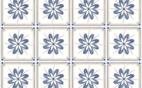 Картинка цветы, фон, текстура, квадраты
