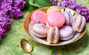 Картинка цветы, flowers, сирень, macaroons, macaron, lilac, макаруны
