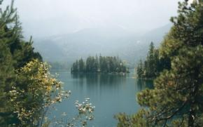 Картинка лес, остров, катер, водоём, Lake Eibsee