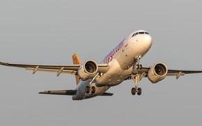 Картинка фон, самолёт, серое небо, A320neo