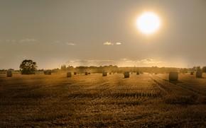 Картинка поле, лето, закат, сено