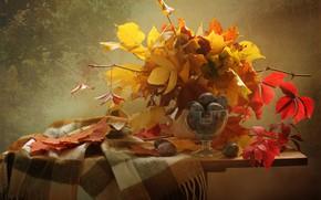 Картинка листья, ветки, ягоды, шарф, фрукты, натюрморт, сливы, столик, вазочка, креманка, Ковалёва Светлана