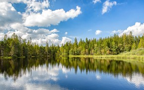 Картинка лес, небо, облака, озеро, пруд, отражение, Швейцария, Switzerland, Canton of Jura, Пруд Грюер, Etang de …