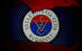 Картинка wallpaper, sport, logo, football, Vasas
