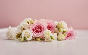 Картинка цветы, фон, розовый, розы, букет, эустома