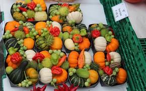 Картинка овощи, разные, рынок