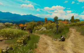 Картинка красота, ведьмак, The Witcher 3: Wild Hunt, туссент