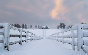 Картинка дорога, снег, дом, забор