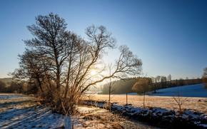 Картинка зима, пейзаж, природа, река, красота