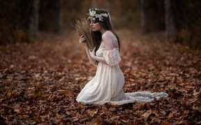 Картинка осень, листья, девушка, платье, колоски, венок, Sofía