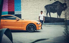 Картинка стена, транспорт, мужик, автомобиль, Ford MUSTANG GT - serie IV
