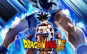 Картинка фон, парень, Dragon Ball, Драконий жемчуг
