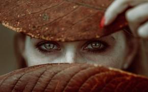 Картинка глаза, взгляд, листья, девушка, лицо, настроение, веснушки, пальцы