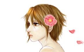 Картинка цветок, лепестки, арт, Линия Дьявола, Devils Line, Tsukasa Taira