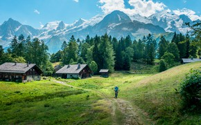 Картинка дорога, лес, лето, горы, природа, деревня, домики, мужчина, Бельгия, велосипедист, Доттиньи