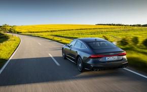 Картинка дорога, Audi, поля, сзади, Audi A7, 2019, S7 Sportback
