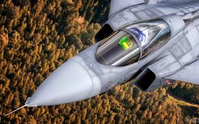 Картинка Saab, Gripen, JAS 39, ВВС Чехии, Кокпит, SAAB, Saab JAS 39C Gripen, ПГО, ИЛС, Gripen …