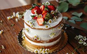 Картинка листья, цветы, стол, еда, ромашки, клубника, торт, фрукты, десерт, сладкое