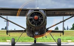 Картинка самолет, Франция, винт, многоцелевой, MH-1521 Broussard, Max Holste