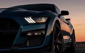 Картинка закат, синий, Mustang, Ford, Shelby, GT500, 2019